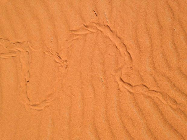 morocco_7_12