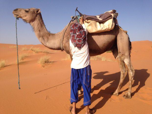 morocco_6_11